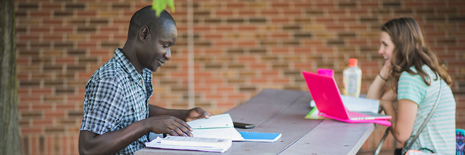 Student studying outdoors on campus.